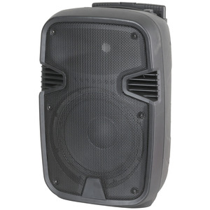 10 Inch Portable PA Speaker with MP3 Player and Bluetooth®
